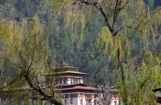 Image of Bhutan - Eleven Days in 2011